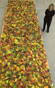 Collecting Leaves, Assembling Memory: Jane Hammond's Fallen and the Function of War Memorials