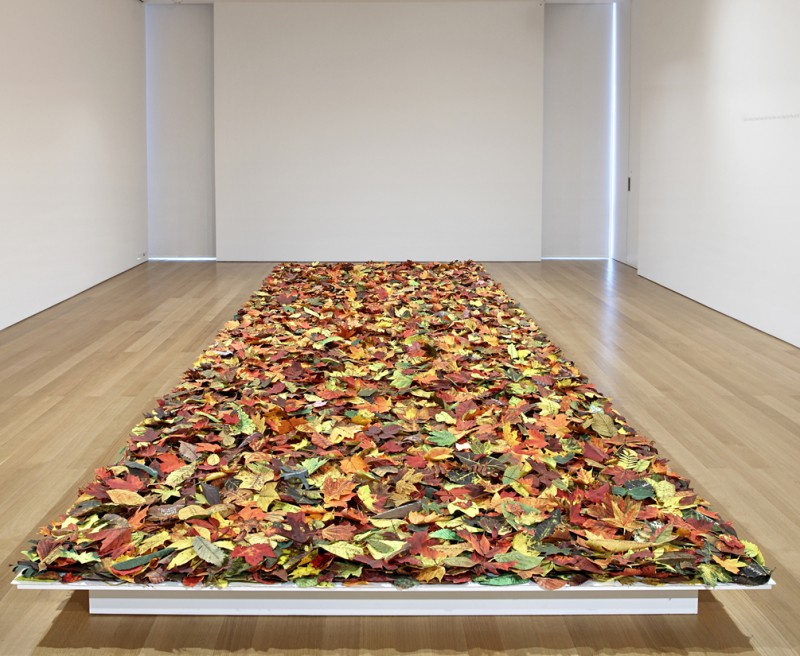 Installation view of Fallen at the FLAG Art Foundation, New York, NY, 2011