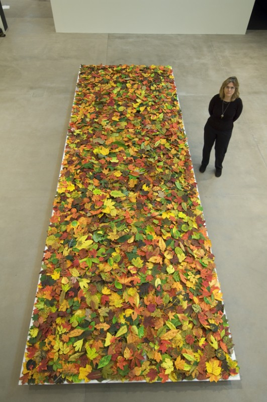 Installation view of Fallen with the artist at the Mildred Lane Kemper Art Museum, St. Louis, MO, 2008