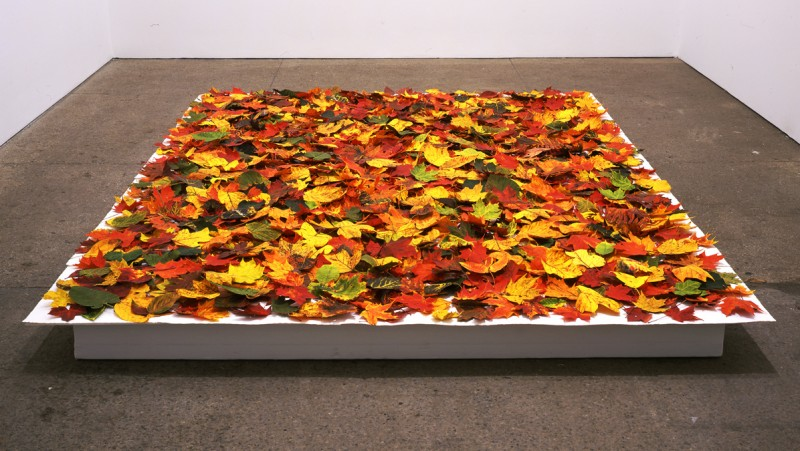 "Installation view of Fallen in its first exhibition, Galerie Lelong, New York, 2005, dimensions for this installation 9"" x 130"" x 89"""