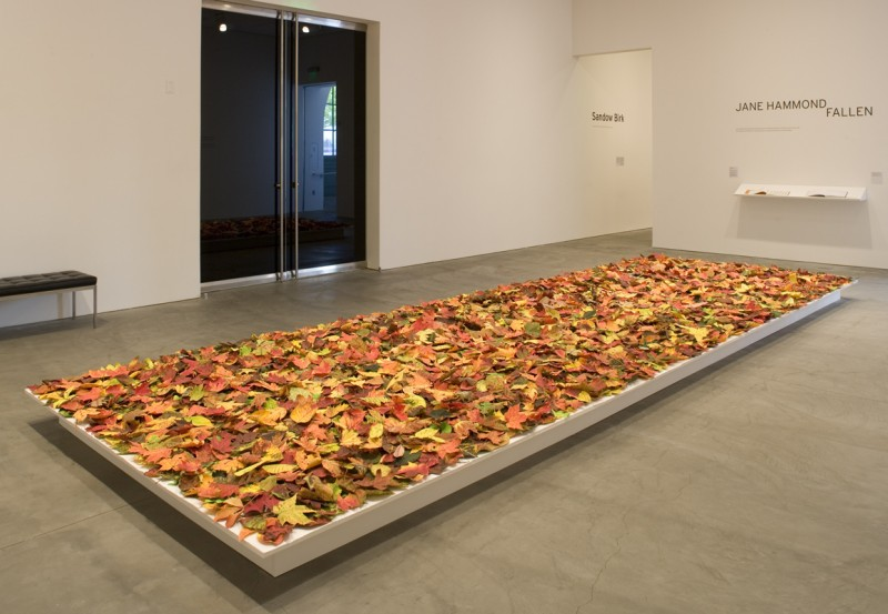 Installation view of Fallen at the Museum of Contemporary Art San Diego, 2009