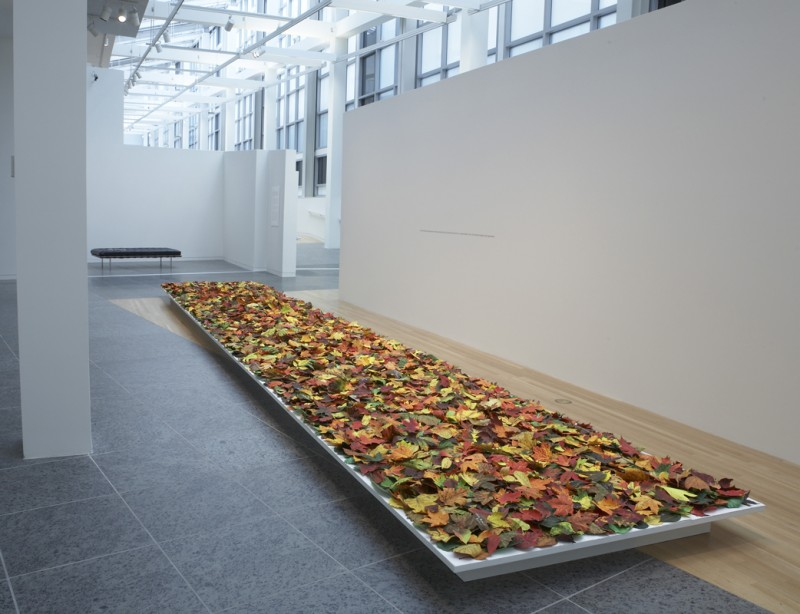Installation view of Fallen at the Wexner Center for the Arts, Columbus, OH, 2008